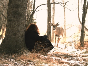 a1janick and the deer