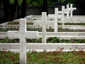 Military cemetery with concrete white crosses 0812_06